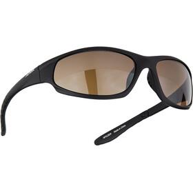 Alpina Wylder Gafas, negro
